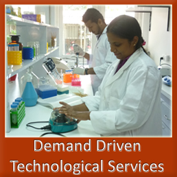 Demand Driven Technological Services
